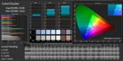 CalMAN ColorChecker nach sRGB