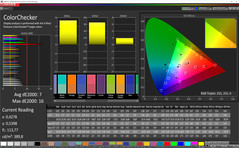 CalMAN ColorChecker (Profil: Lebhaft, Zielfarbraum sRGB)