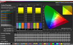 CalMAN ColorChecker (Profil: Normal, Zielfarbraum sRGB)