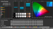 CalMAN: ColorChecker (kalibriert)