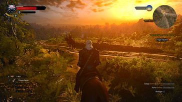The Witcher 3...
